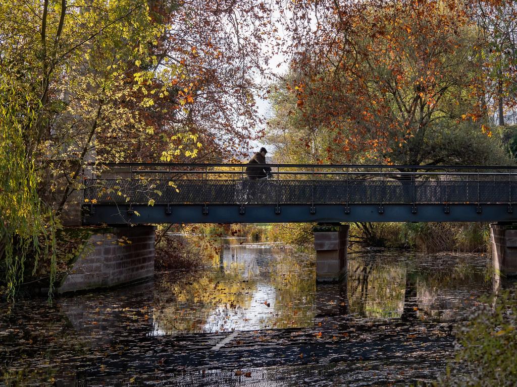Un pont sur l'automne...+ nouvel ajout. 49169231506_5f18002b1b_b