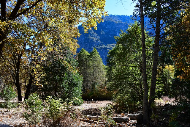 Yosemite NP - USA_4139