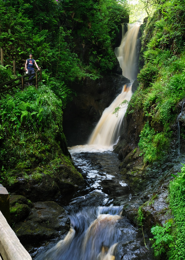 2 weeks itinerary Ireland: Glenariff Forest Park, Northern Ireland