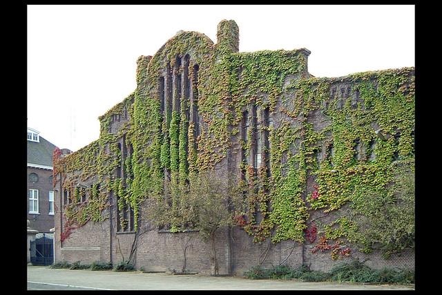 den bosch machinefabriek grasso 02 1912 de beer fc (parallelwg)