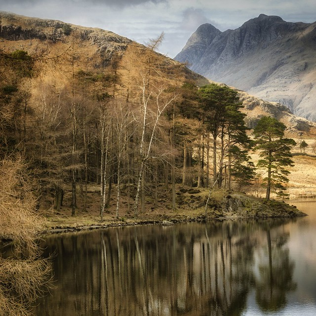 Another old one from Blea Tarn