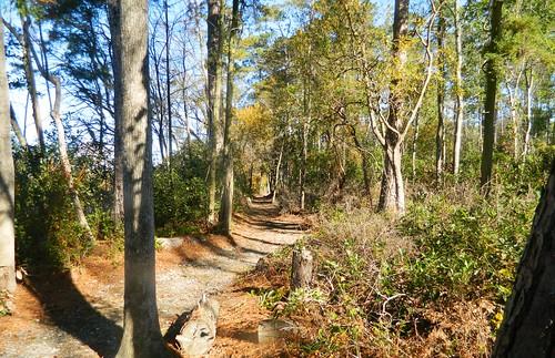CCC Loop Trail