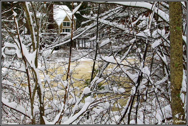 Winter 2019 - On the river's edge after the storm