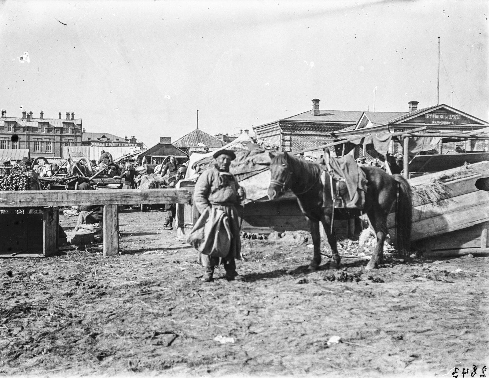 08. Барнаул. Мужчина с конем