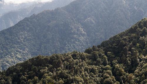 Bhutan-16.jpg