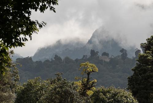 Bhutan-42.jpg