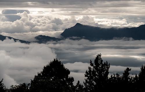 Bhutan-3.jpg