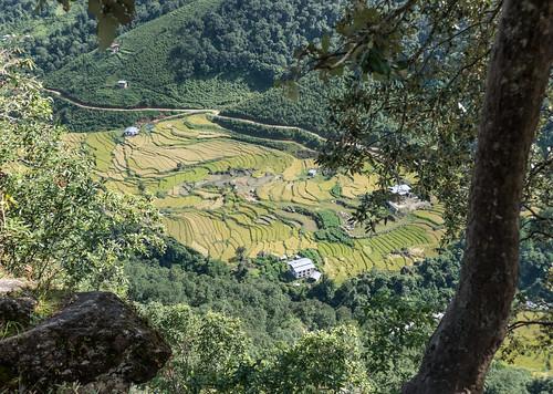 Bhutan-28.jpg