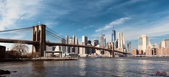 NYC1119