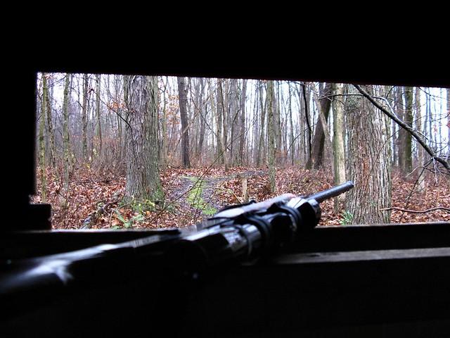 DEER GUN SEASON OPENING DAY...CARROLL COUNTY, OHIO