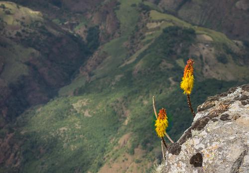 Ethiopia North-17.jpg