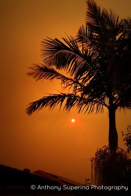 Bushfire Sunset -3