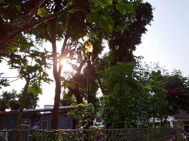 Foto Kamera Utama Redmi 8 (Backlight)