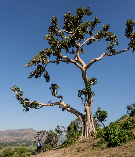 Ethiopia North-5.jpg