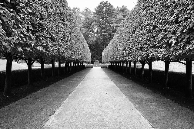 Gardens at The Mount