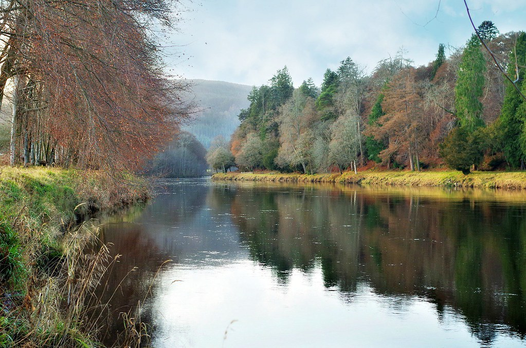 Winter Colours on the river Tay