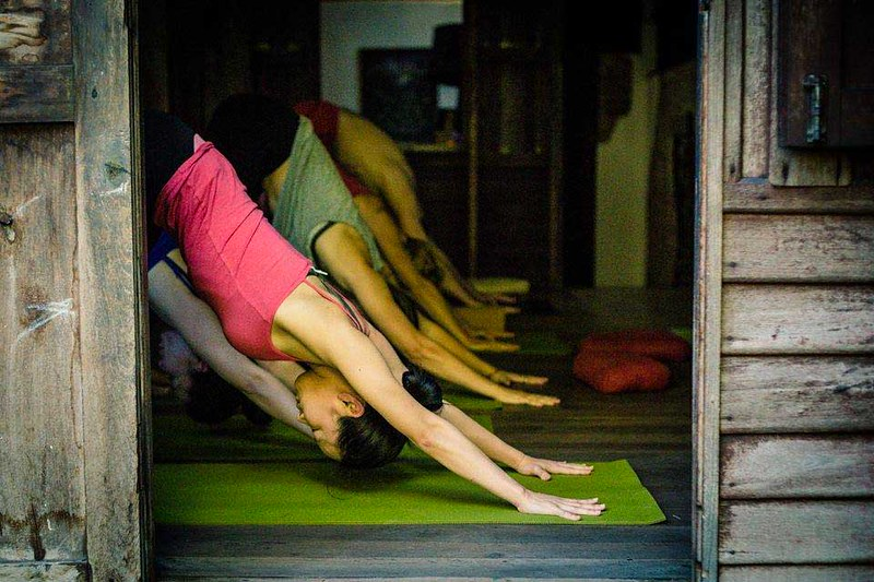 Wild Rose Yoga (Chiang Mai, Thailand) – Info & Travellers Reviews