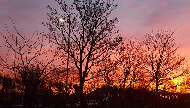 2019-12-05 Red Sky in the Morning