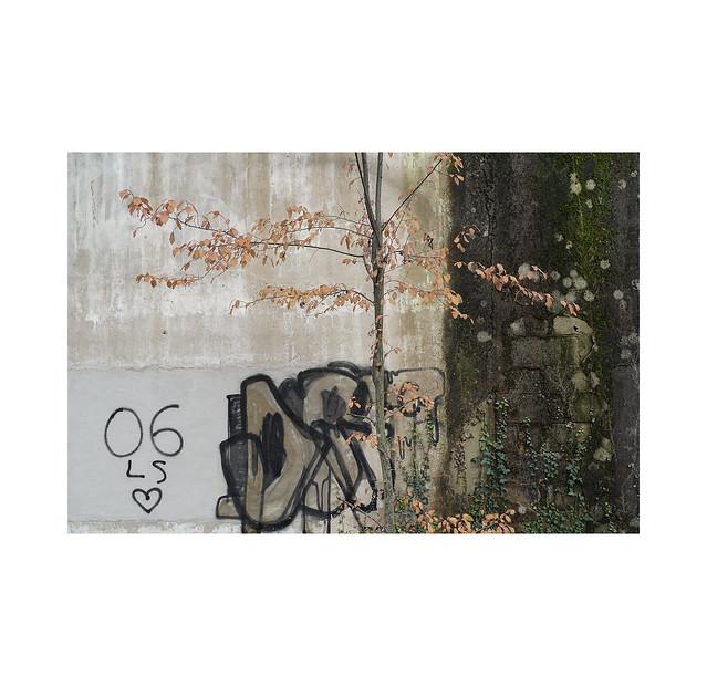 Autumn *street art... 3 Pamplona.