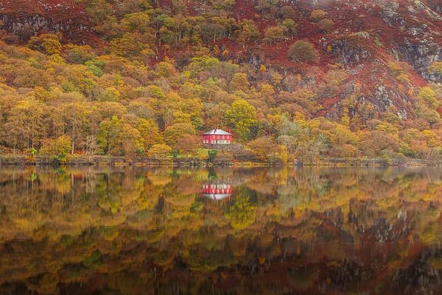 Autumn Dinas