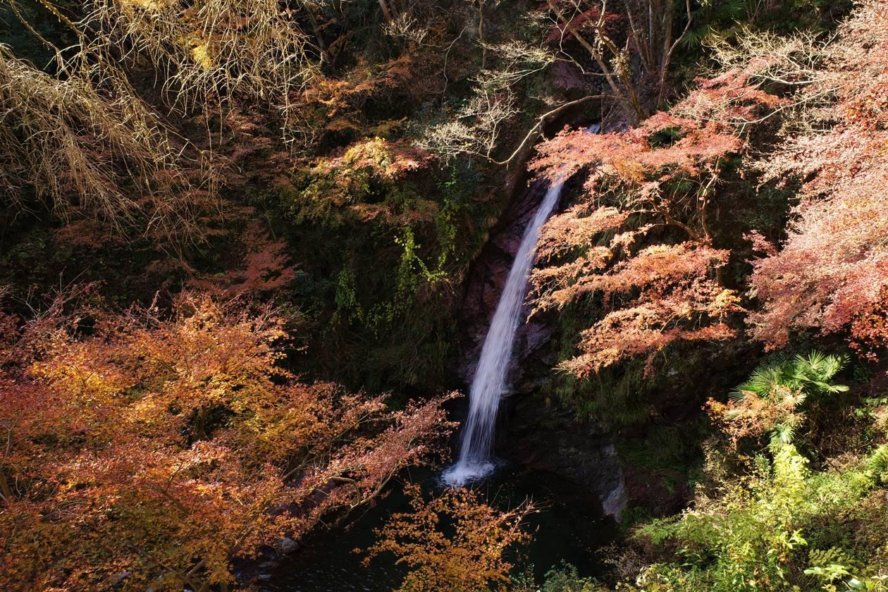 秩父・華厳の滝と紅葉