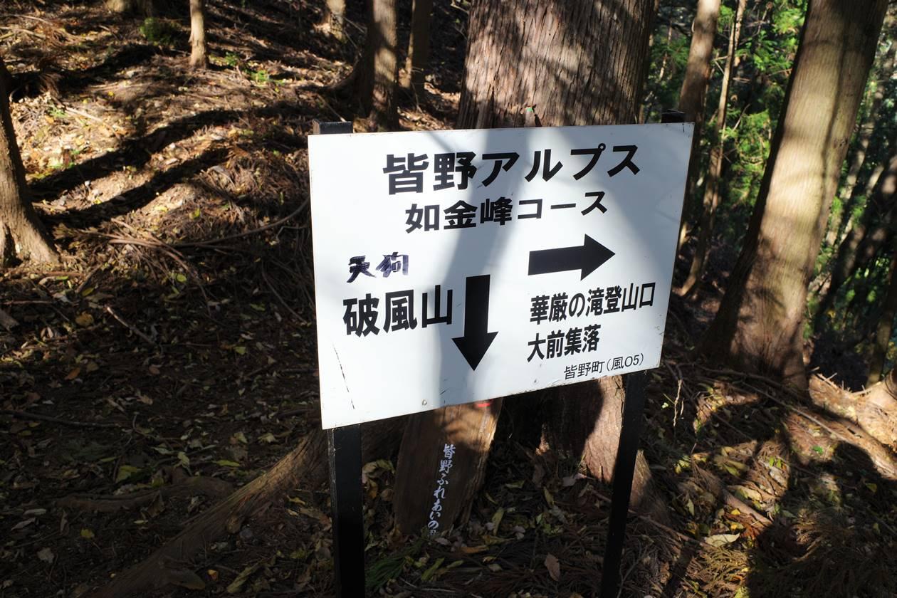如金峰コース