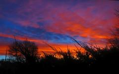 Sunrise  (由  langkawi