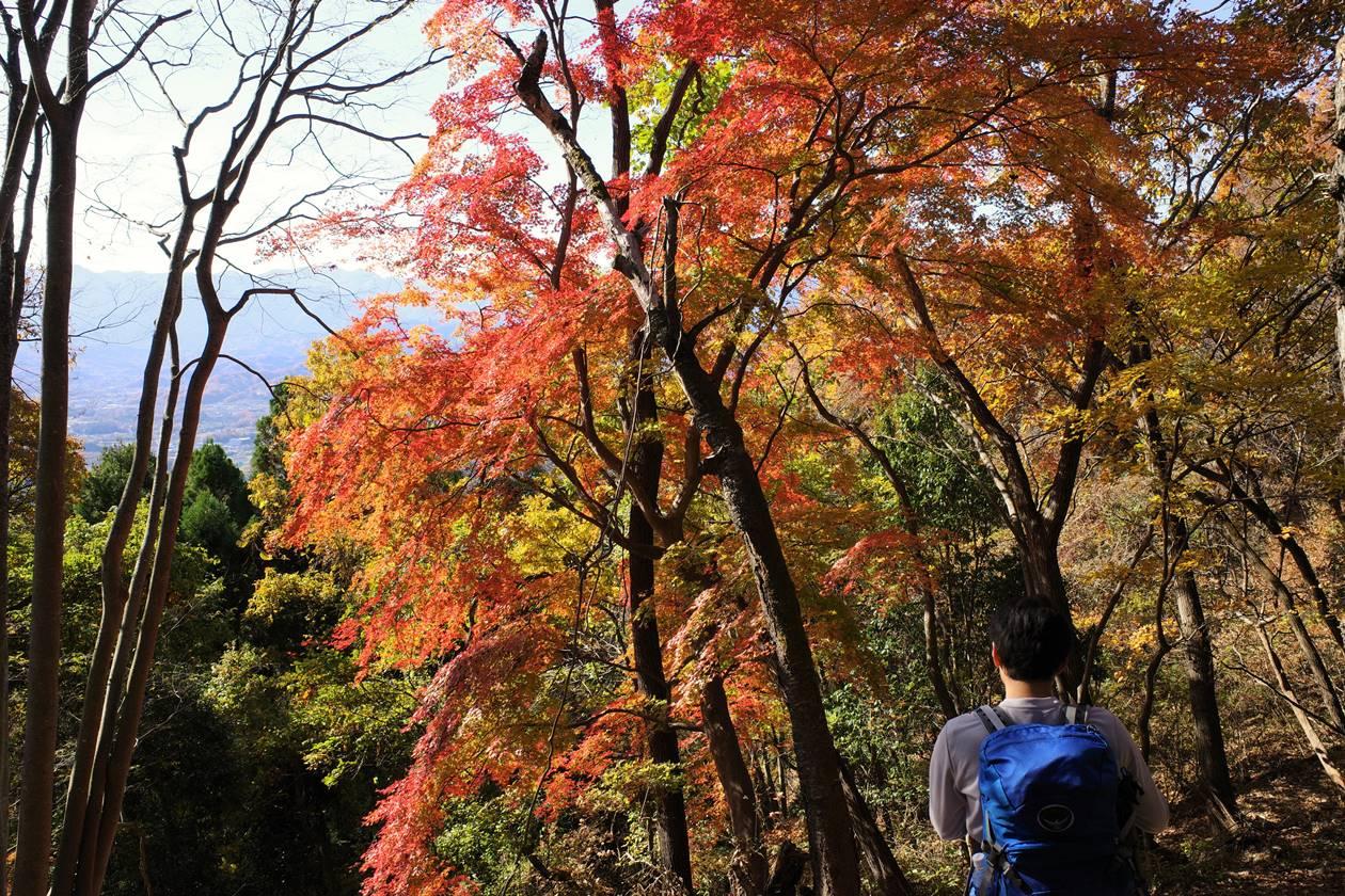 破風山の紅葉ハイキング