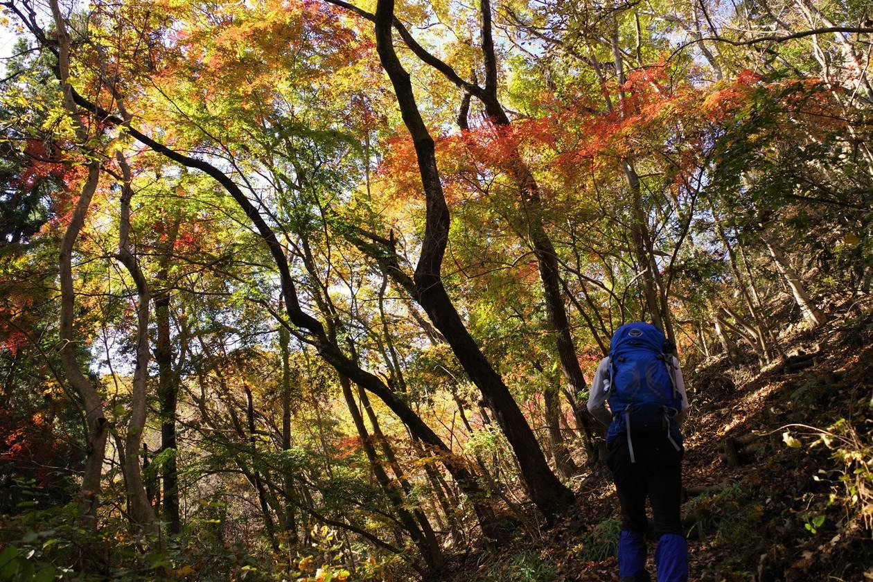 破風山の紅葉登山
