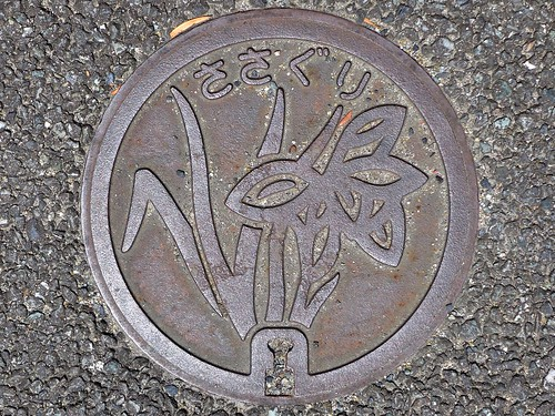 Sasaguri Fukuoka, manhole cover 2 (福岡県篠栗町のマンホール2)