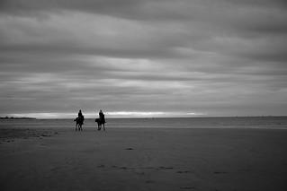 Along the Ocean