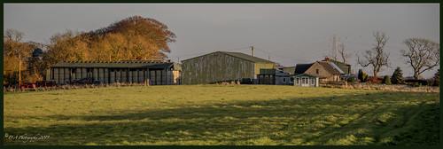 Clarabad Farm DSC_4276