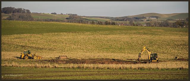 Working on the Landscape DSC_4271