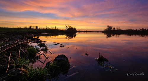 Bure Dawn