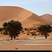 Big Mama Dune, Namib-Naukluft NP, Namibia