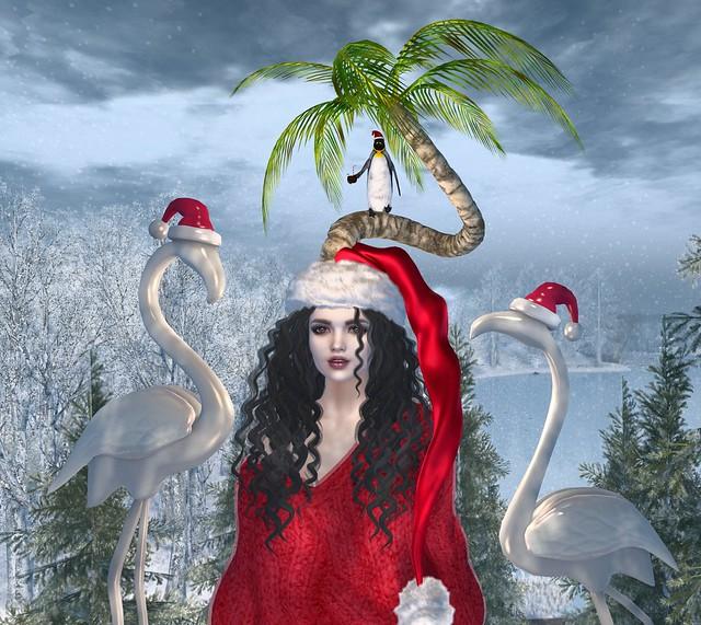 I'm Dreaming Of A Tropical Christmas