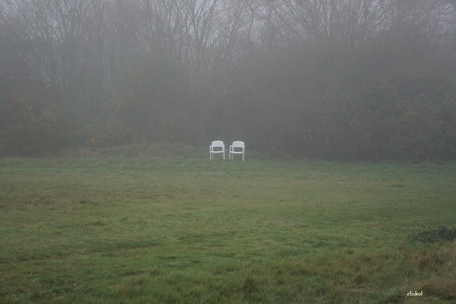 TWO SEATS IN THE FOG