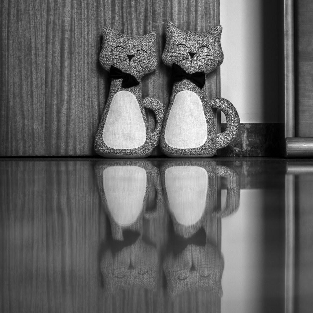 Reflexive cats