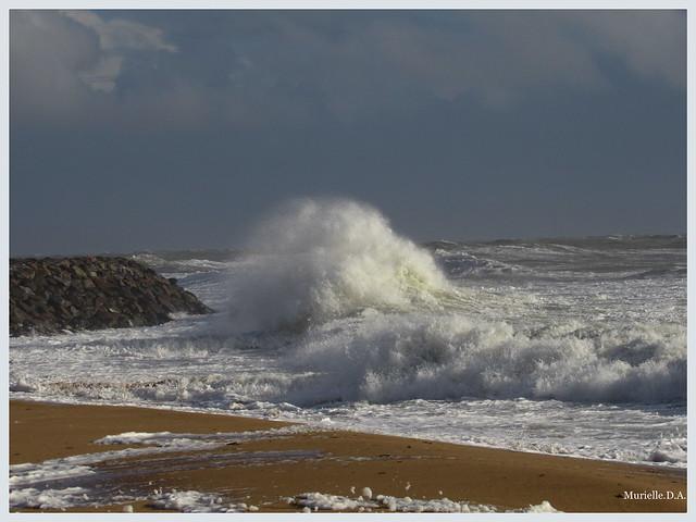 L'océan tourmenté.