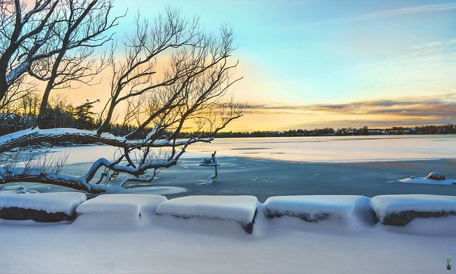 Gradual  Freeze On The Lake