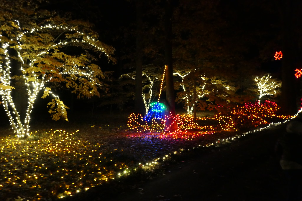 Million Bulb Walk Norfolk Botanical Garden Nov 2019 A Photo On Flickriver