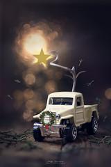 """""""Christmas pickup"""""""
