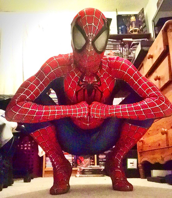 Spider-Man poised for action!