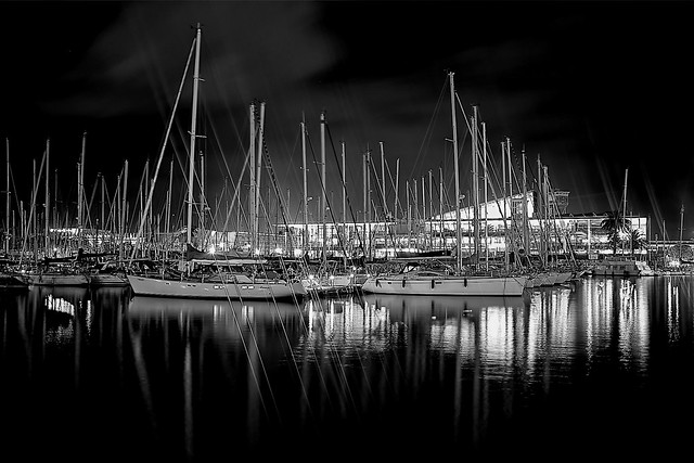 Port Vell in black
