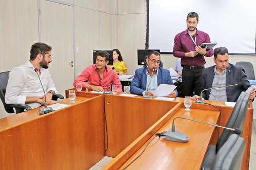 13ª Reunião Ad referendum - Comissão de Legislação e Justiça