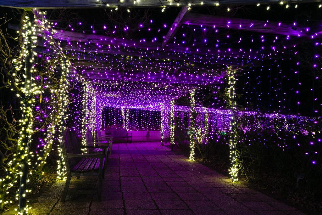 Best of Garden of Lights