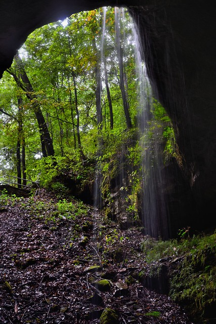 A Light Shines from Above and Across the Filaments of Water Falling (Mammoth Cave National Park)