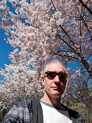 Orn @ Duke Gardens