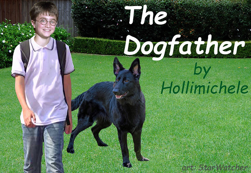 Background corner of a back yard.  Left has low hedge with white flowers, with wooden wall of shed behind.  Right has taller hedge with darker leaves.  At left, in front of flowered hedge, a smiling Harry Potter with white polo, faded jeans, wearing black backpack.  To Harry's left (picture right) and slightly behind is Padfoot, a large black dog with medium-length hair and stand-up ears, looking toward Harry, mouth open in doggy smile.  Text at top right reads 'The Dogfather'.