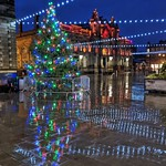 Christmas Tree in Accrington